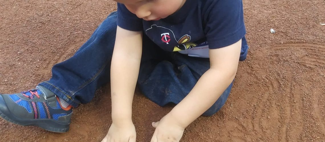 Bear Playing with Dirt